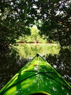 Paddling the Mangrove Tunnels of Thousand Islands