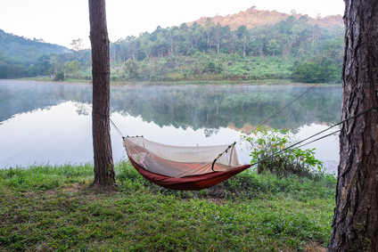 Hammock tied to tree on coast reservoir