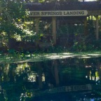 A Paddle Trip to the Silver Springs