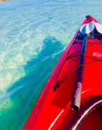 Paddling The Clear Waters At Fort Pierce
