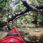 Paddle Trip on Silver and Ocklawaha Rivers.