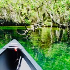 Paddling Around Hontoon Island/ Snake Creek and Blue Springs